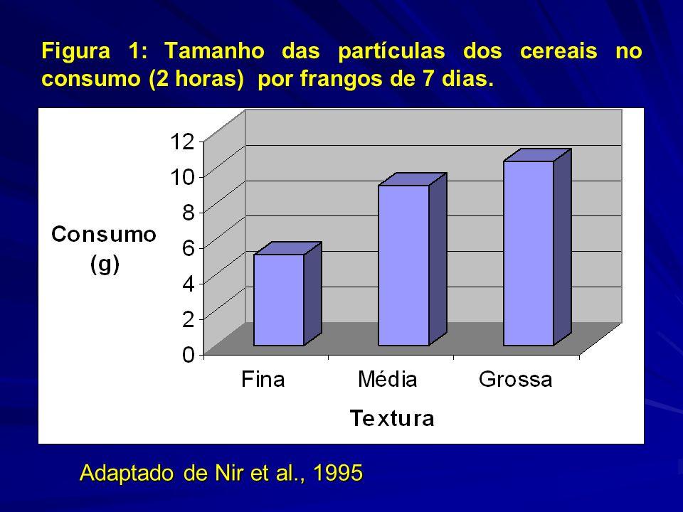 Figura 1: Tamanho das partículas dos cereais no consumo (2 horas) por frangos de 7 dias. Adaptado de Nir et al., 1995