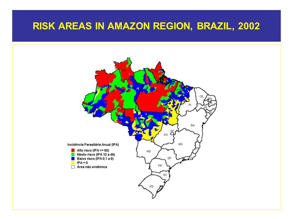 RISK AREAS IN AMAZON REGION, BRAZIL, 2002