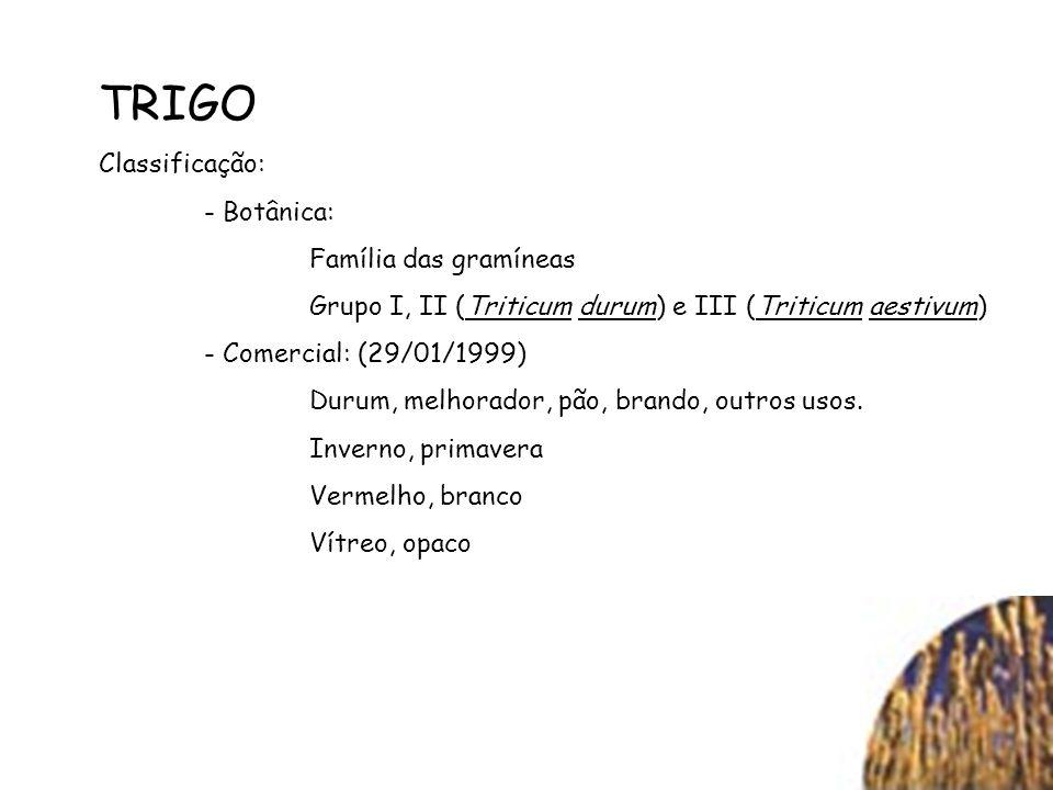 TRIGO Classificação: - Botânica: Família das gramíneas Grupo I, II (Triticum durum) e III (Triticum aestivum) - Comercial: (29/01/1999) Durum, melhora