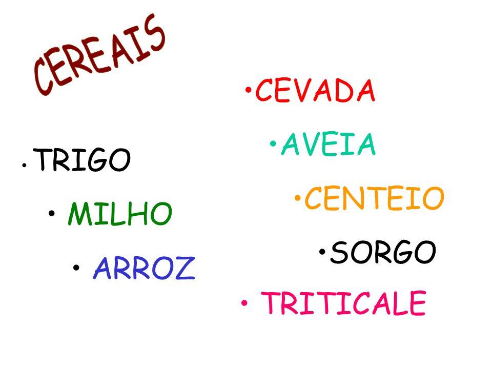 TRIGO MILHO ARROZ CEVADA AVEIA CENTEIO SORGO TRITICALE