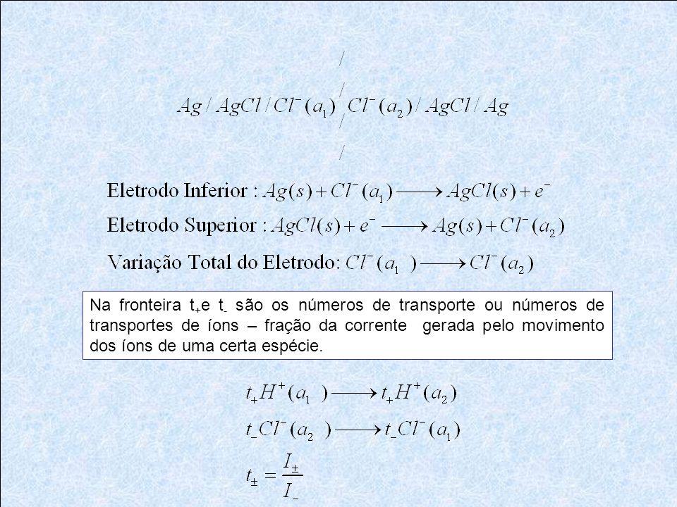 Na fronteira t + e t - são os números de transporte ou números de transportes de íons – fração da corrente gerada pelo movimento dos íons de uma certa