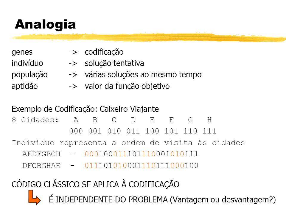 Analogia genes-> codificação indivíduo -> solução tentativa população -> várias soluções ao mesmo tempo aptidão-> valor da função objetivo Exemplo de