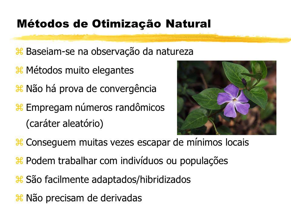 Métodos de Otimização Natural zBaseiam-se na observação da natureza zMétodos muito elegantes zNão há prova de convergência zEmpregam números randômico