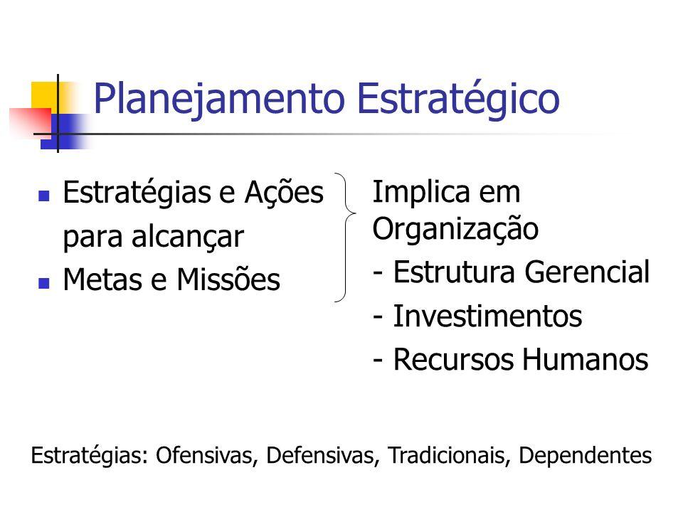 Planejamento Estratégico Estratégias e Ações para alcançar Metas e Missões Implica em Organização - Estrutura Gerencial - Investimentos - Recursos Hum