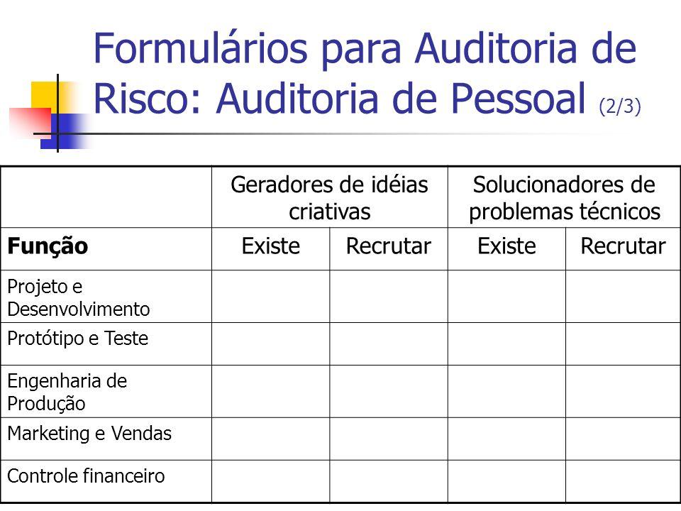 Formulários para Auditoria de Risco: Auditoria de Pessoal (2/3) Geradores de idéias criativas Solucionadores de problemas técnicos FunçãoExisteRecruta