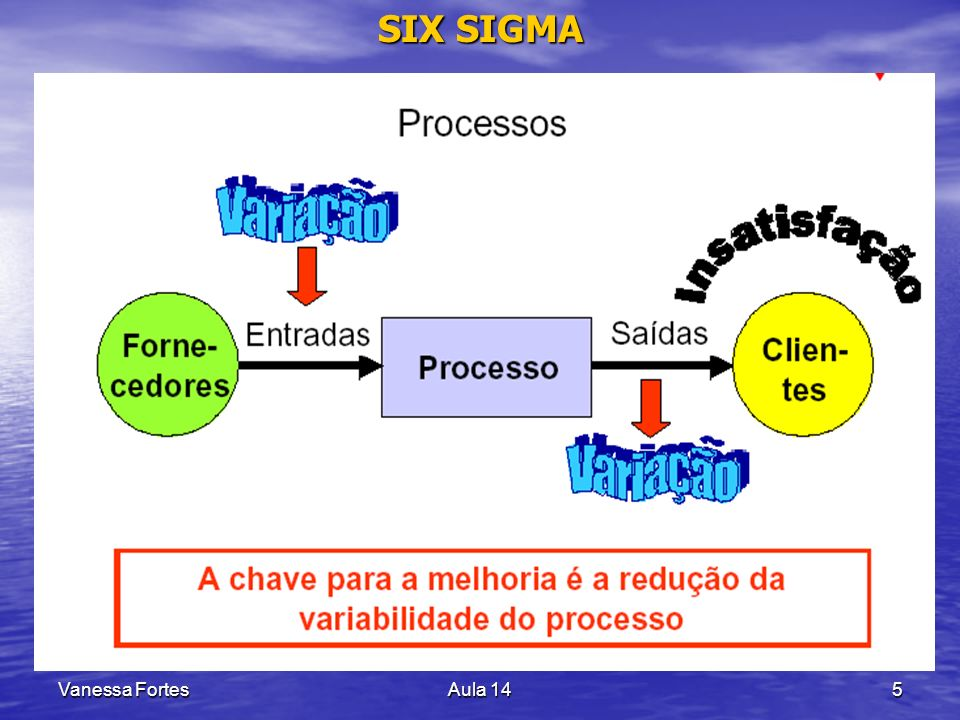 Vanessa FortesAula 145 SIX SIGMA