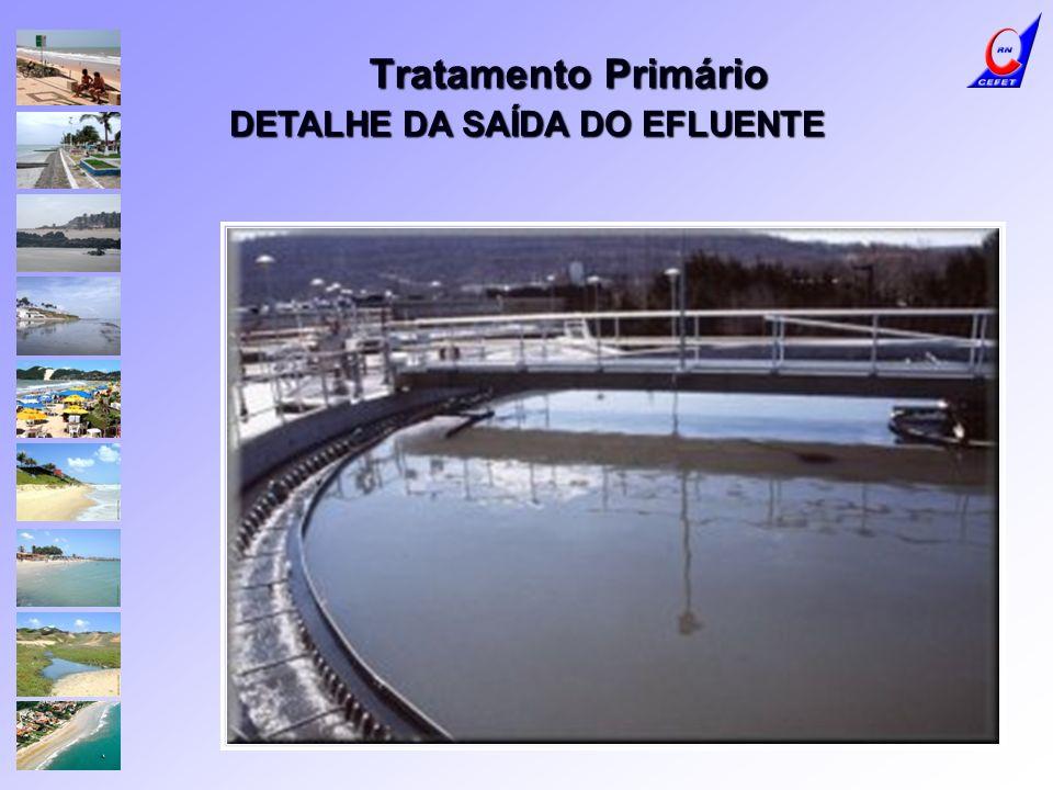 DETALHE DA SAÍDA DO EFLUENTE