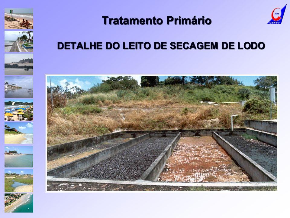 Tratamento Primário DETALHE DO LEITO DE SECAGEM DE LODO