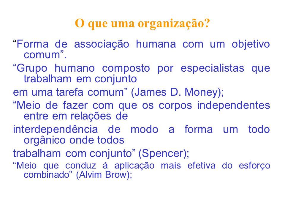 O que uma organização? Forma de associação humana com um objetivo comum. Grupo humano composto por especialistas que trabalham em conjunto em uma tare