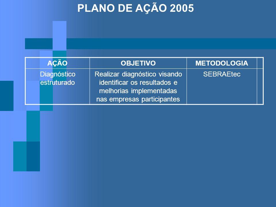 PLANO DE AÇÃO 2005 AÇÃOOBJETIVOMETODOLOGIA Diagnóstico estruturado Realizar diagnóstico visando identificar os resultados e melhorias implementadas na