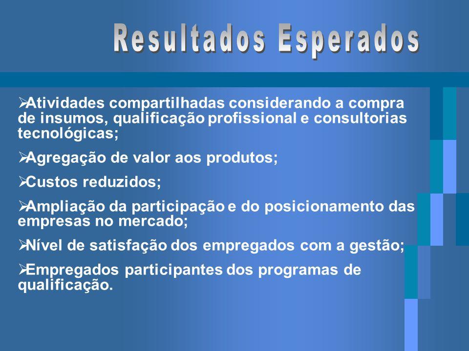 Atividades compartilhadas considerando a compra de insumos, qualificação profissional e consultorias tecnológicas; Agregação de valor aos produtos; Cu