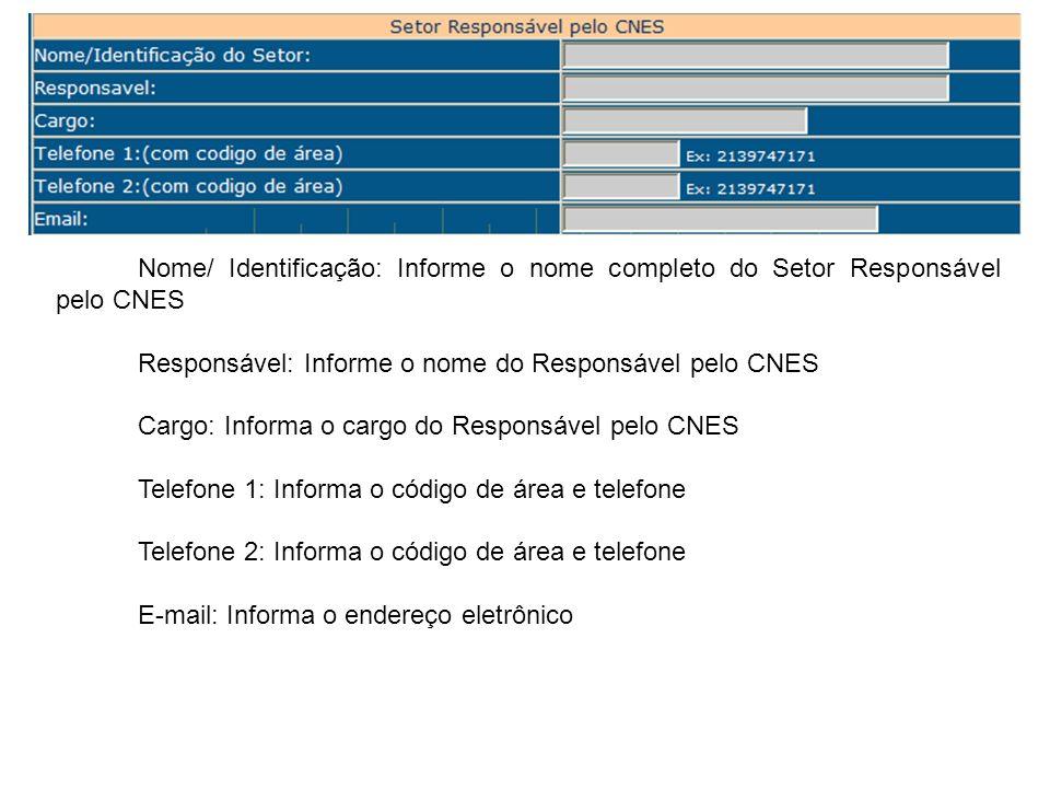 Nome/ Identificação: Informe o nome completo do Setor Responsável pelo CNES Responsável: Informe o nome do Responsável pelo CNES Cargo: Informa o carg