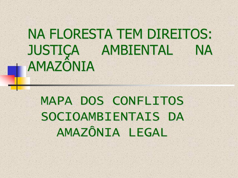 O que é o Mapa dos Conflitos Socioambientais da Amazônia Legal É um dos instrumentos pedagógicos da Campanha Na Floresta Têm Direitos: Justiça Ambiental na Amazônia, construído a partir de uma metodologia participativa, busca evidenciar a degradação ambiental e o desrespeito aos direitos e modos de vida dos povos amazônicos.