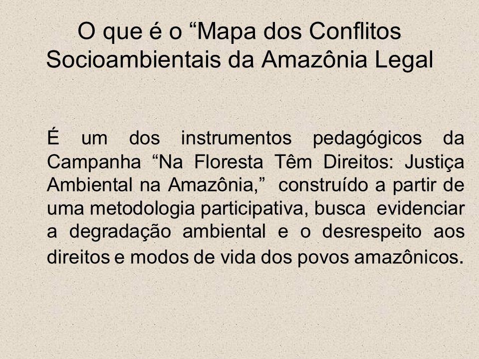 Trata-se de um mapa social, pois os segmentos vulneráveis da Amazônia, expostos diretamente aos impactos negativos do modelo de desenvolvimento reproduzido na região, são os protagonistas da metodologia de construção e expressam os conflitos e as injustiças ambientais vivenciadas no cotidiano da FLORESTA.
