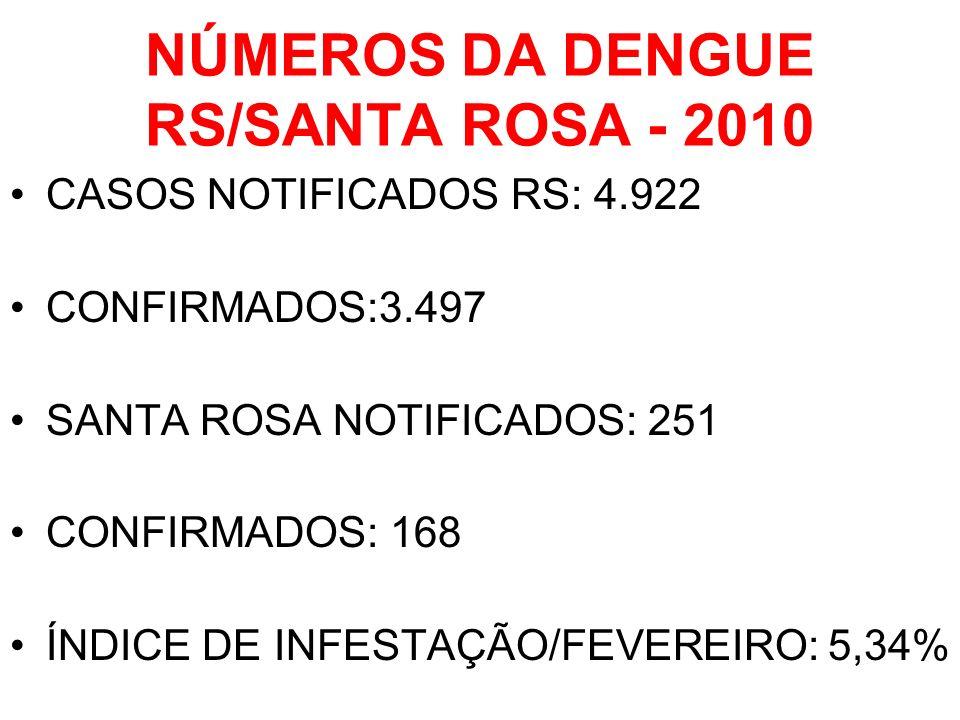 NÚMEROS DA DENGUE RS/SANTA ROSA - 2010 CASOS NOTIFICADOS RS: 4.922 CONFIRMADOS:3.497 SANTA ROSA NOTIFICADOS: 251 CONFIRMADOS: 168 ÍNDICE DE INFESTAÇÃO/FEVEREIRO: 5,34%