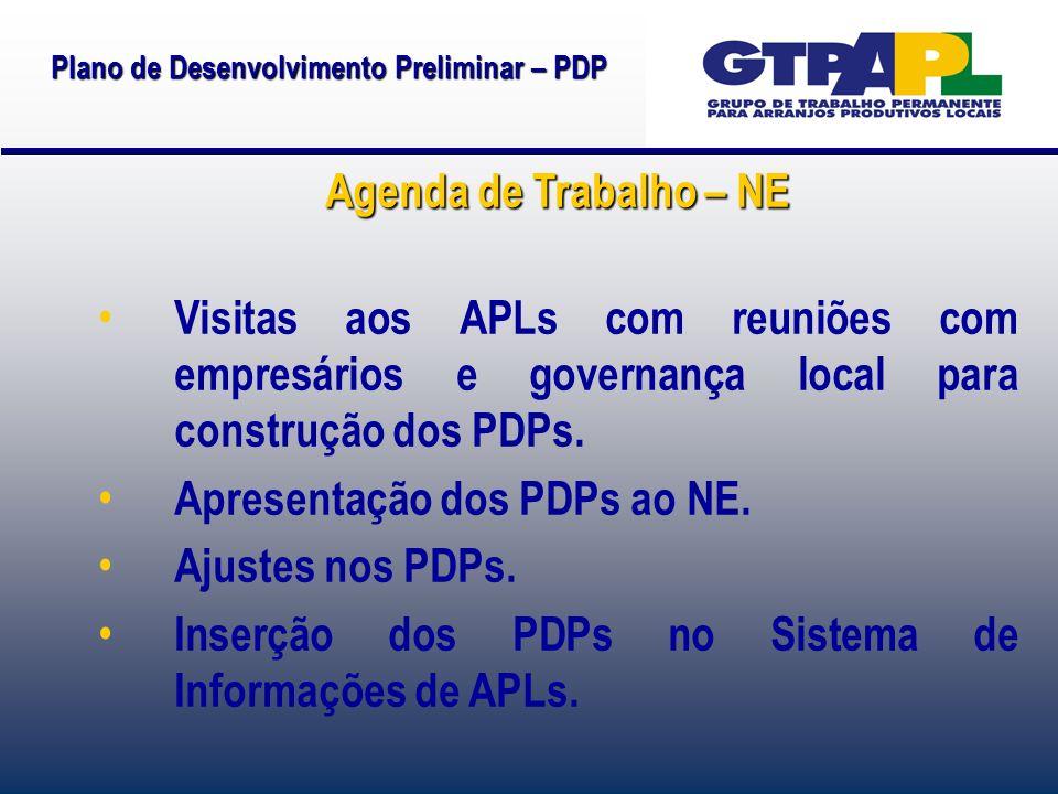 Plano de Desenvolvimento Preliminar – PDP Agenda de Trabalho – NE Visitas aos APLs com reuniões com empresários e governança local para construção dos PDPs.