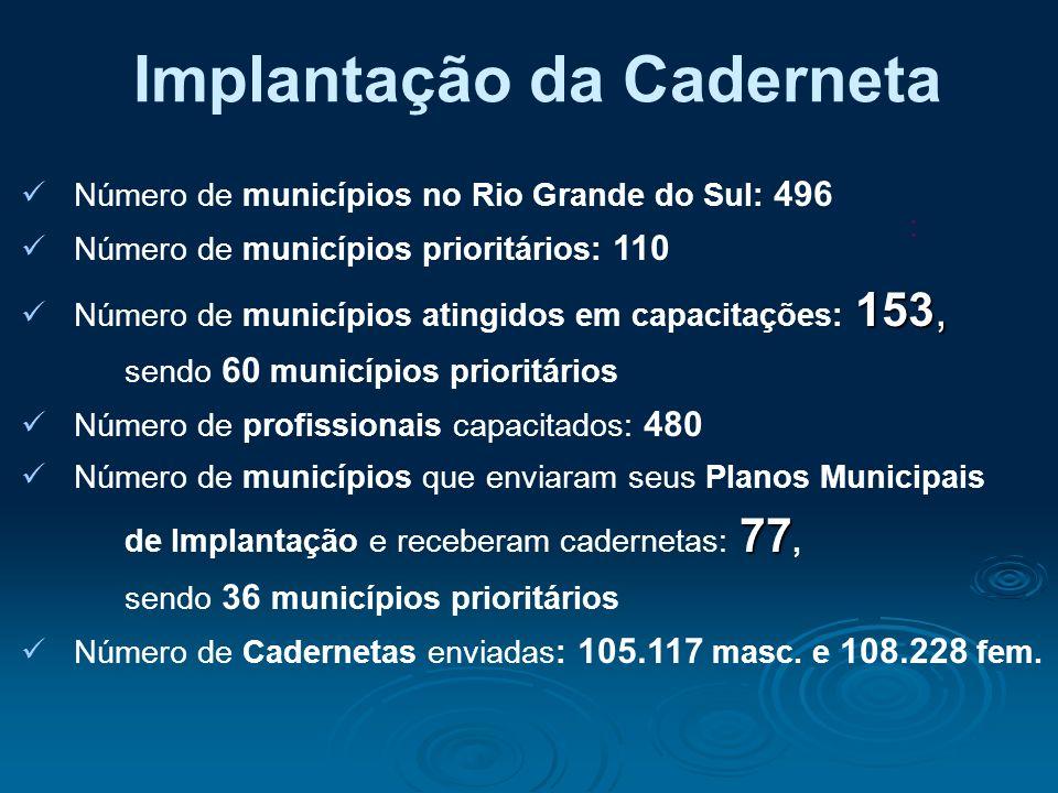 Número de municípios no Rio Grande do Sul: 496 Número de municípios prioritários: 110 153, Número de municípios atingidos em capacitações: 153, sendo