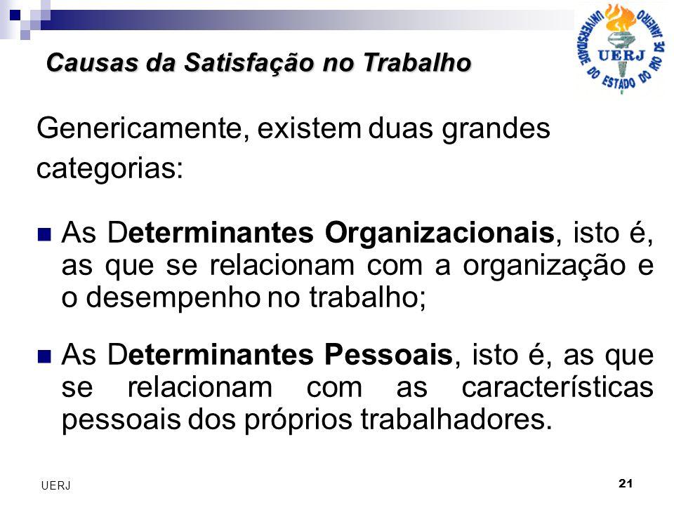 Genericamente, existem duas grandes categorias: As Determinantes Organizacionais, isto é, as que se relacionam com a organização e o desempenho no trabalho; As Determinantes Pessoais, isto é, as que se relacionam com as características pessoais dos próprios trabalhadores.