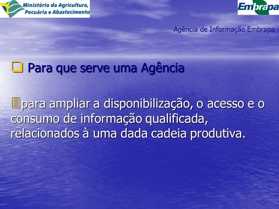 Para que serve uma Agência Para que serve uma Agência 3 para ampliar a disponibilização, o acesso e o consumo de informação qualificada, relacionados à uma dada cadeia produtiva.