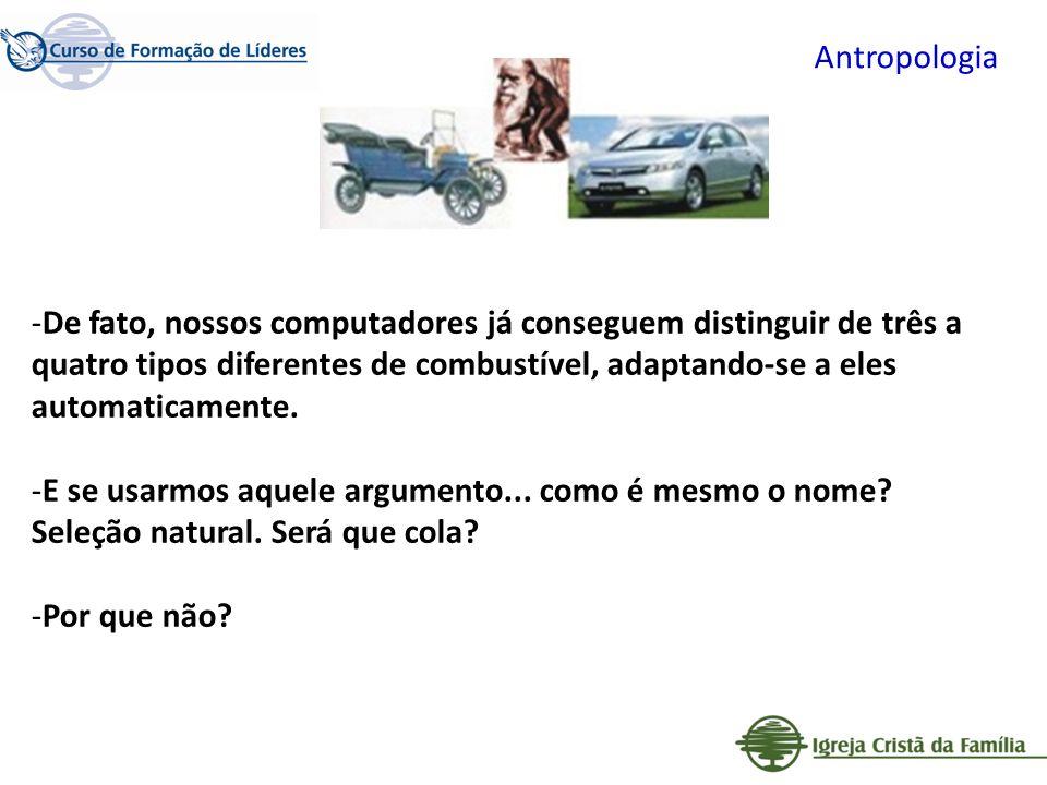 Antropologia -De fato, nossos computadores já conseguem distinguir de três a quatro tipos diferentes de combustível, adaptando-se a eles automaticamen