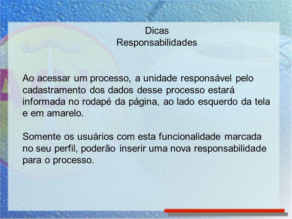 Ao acessar um processo, a unidade responsável pelo cadastramento dos dados desse processo estará informada no rodapé da página, ao lado esquerdo da te