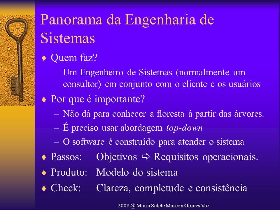 2008 @ Maria Salete Marcon Gomes Vaz Panorama da Engenharia de Sistemas Quem faz? –Um Engenheiro de Sistemas (normalmente um consultor) em conjunto co