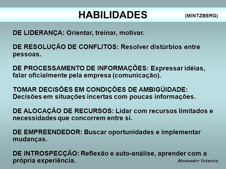 HABILIDADES DE LIDERANÇA: Orientar, treinar, motivar. DE RESOLUÇÃO DE CONFLITOS: Resolver distúrbios entre pessoas. DE PROCESSAMENTO DE INFORMAÇÕES: E
