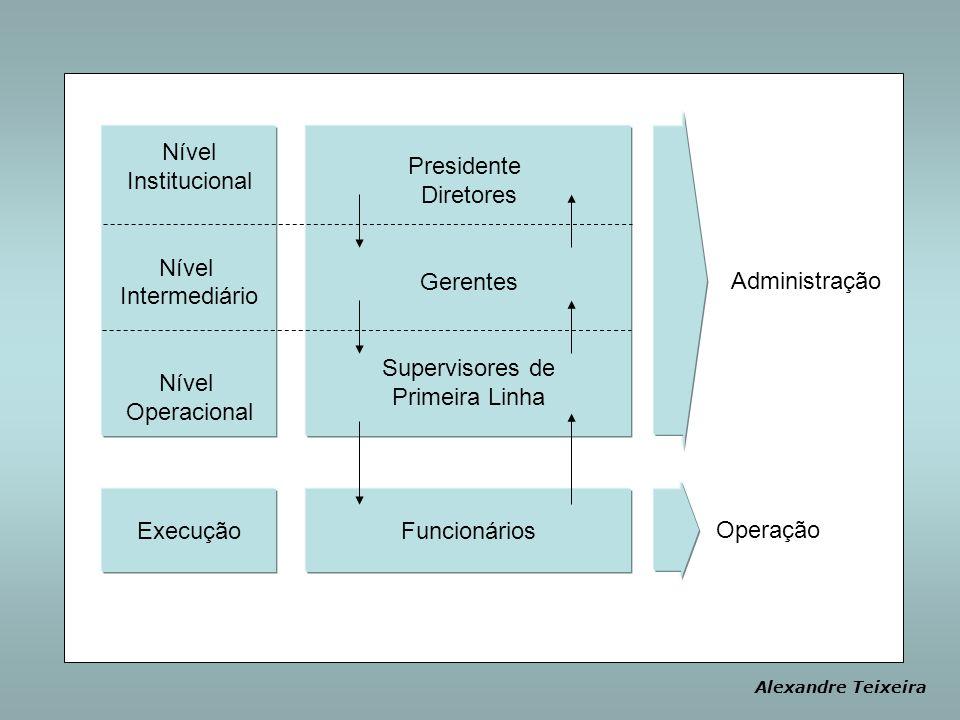 Presidente Diretores Gerentes Supervisores de Primeira Linha Funcionários Nível Institucional Nível Intermediário Nível Operacional Administração Oper