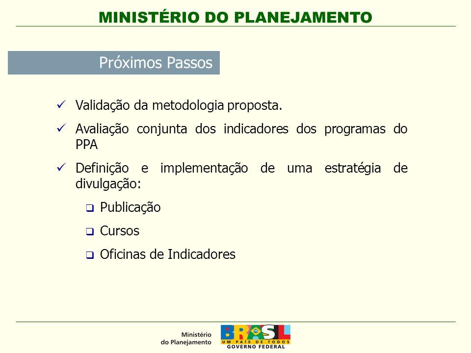 Próximos Passos Validação da metodologia proposta. Avaliação conjunta dos indicadores dos programas do PPA Definição e implementação de uma estratégia