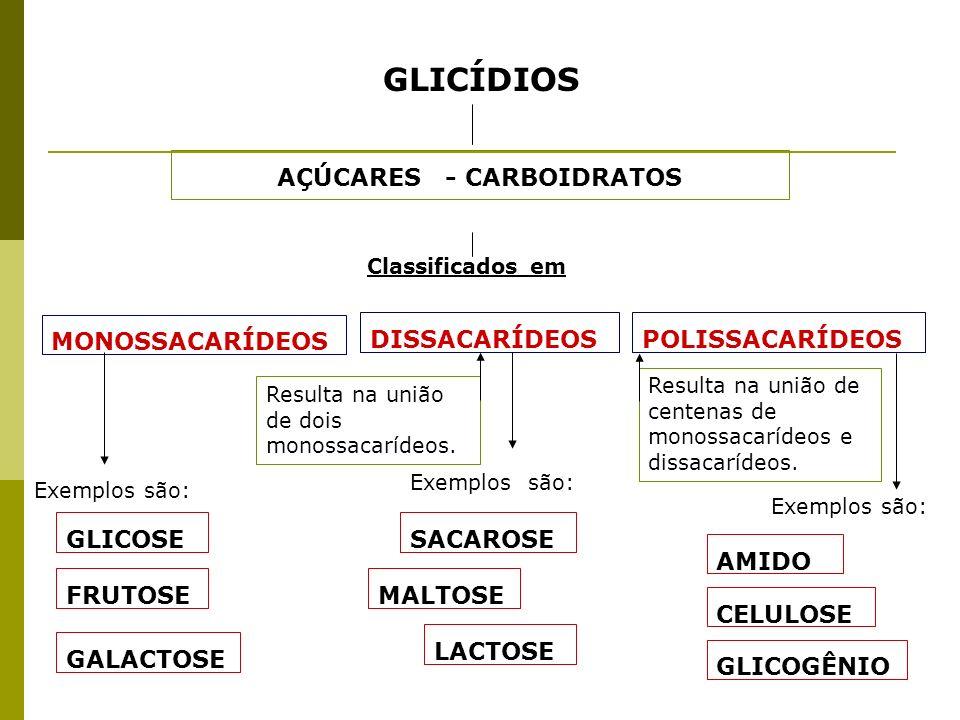 GLICÍDIOS AÇÚCARES - CARBOIDRATOS Classificados em MONOSSACARÍDEOS DISSACARÍDEOSPOLISSACARÍDEOS Resulta na união de dois monossacarídeos. Resulta na u