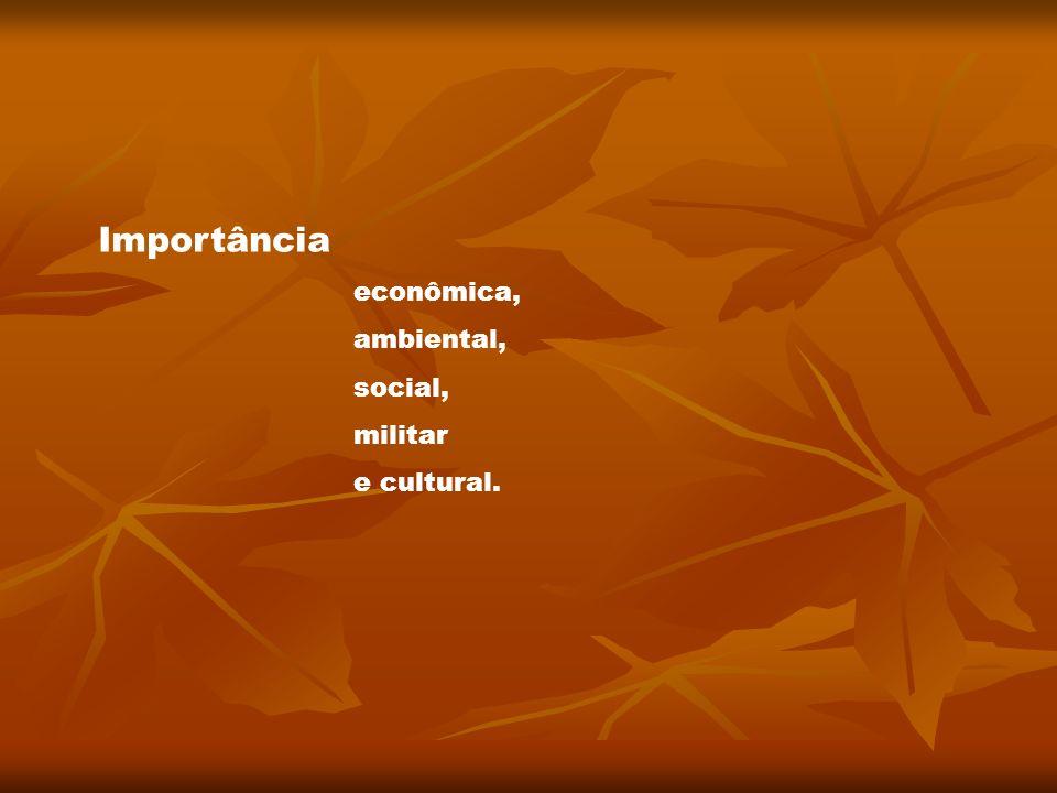 Importância econômica, ambiental, social, militar e cultural.
