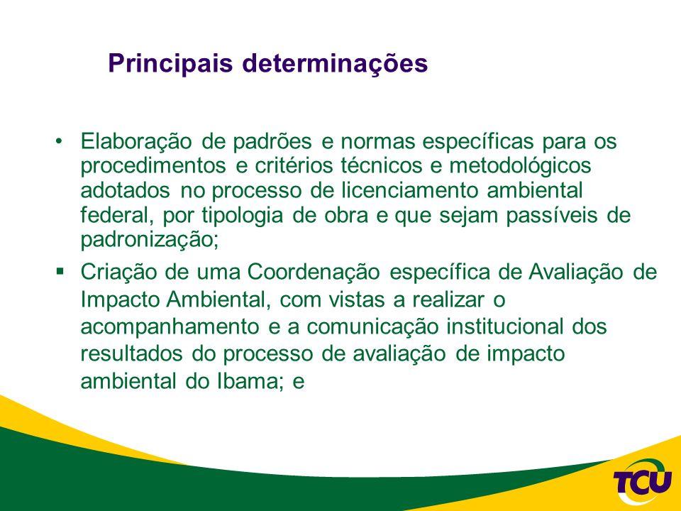 Principais determinações Elaboração de padrões e normas específicas para os procedimentos e critérios técnicos e metodológicos adotados no processo de