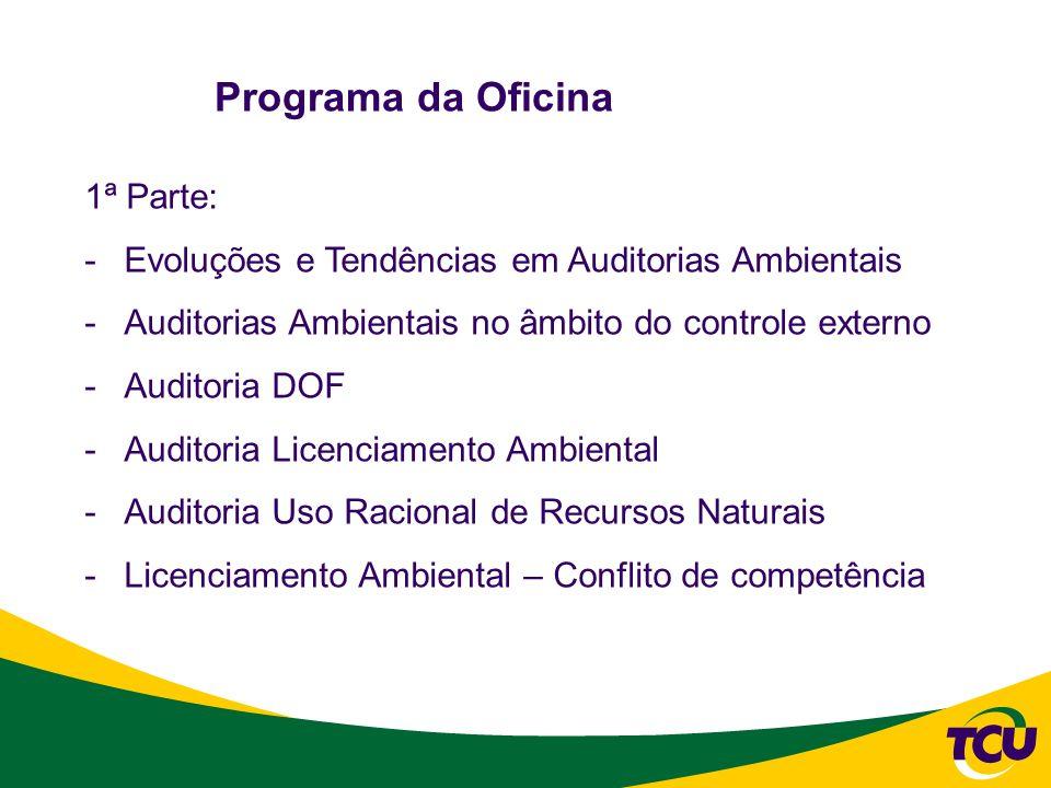 Programa da Oficina 2ª Parte: -Trabalho prático de preparação de uma matriz de planejamento de auditoria, a respeito do tema mudanças climáticas