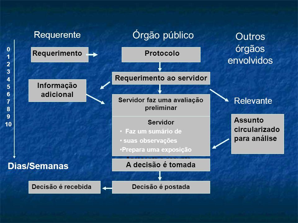 Requerente Órgão público Outros órgãos envolvidos RequerimentoProtocolo Requerimento ao servidor Servidor faz uma avaliação preliminar Servidor Faz um