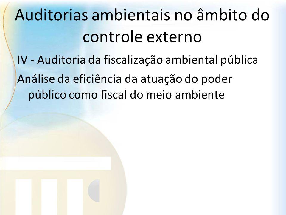 Auditorias ambientais no âmbito do controle externo IV - Auditoria da fiscalização ambiental pública Análise da eficiência da atuação do poder público