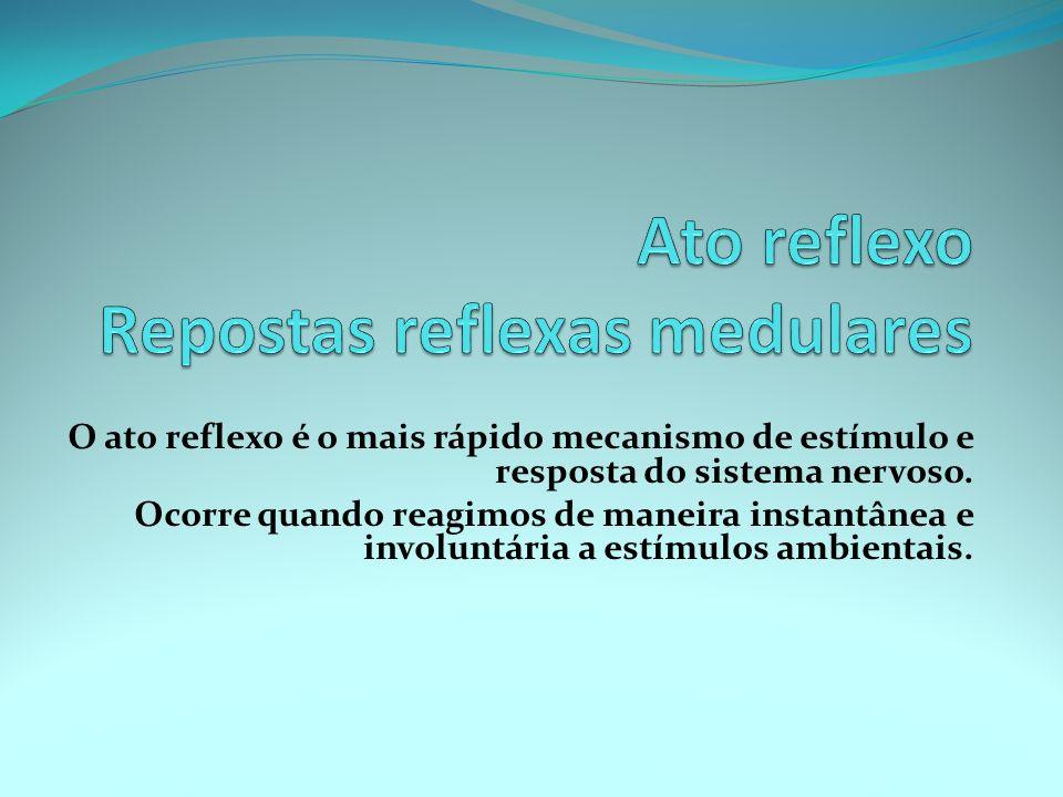 O ato reflexo é o mais rápido mecanismo de estímulo e resposta do sistema nervoso. Ocorre quando reagimos de maneira instantânea e involuntária a estí