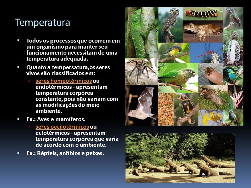 Temperatura Todos os processos que ocorrem em um organismo para manter seu funcionamento necessitam de uma temperatura adequada. Quanto a tempersatura