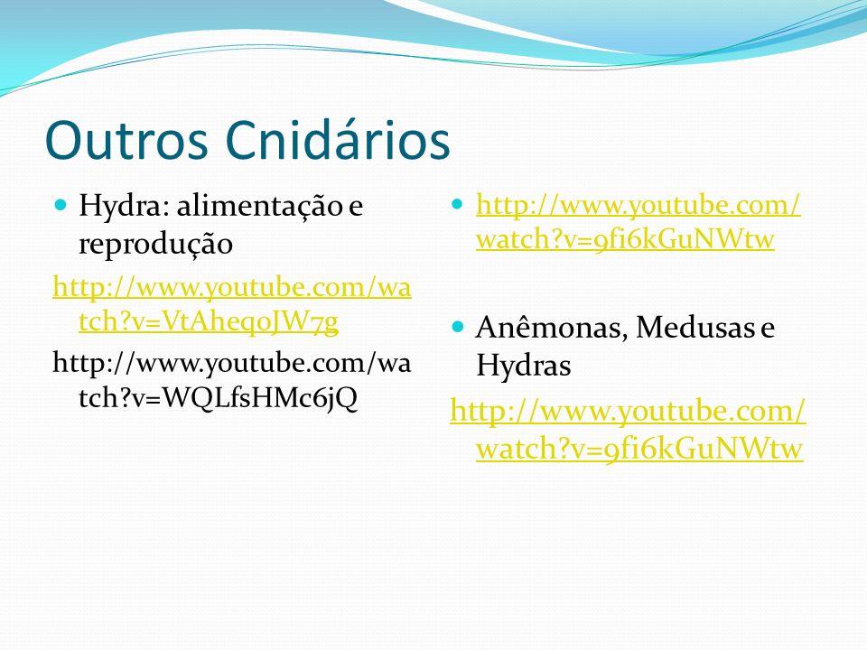 Outros Cnidários Hydra: alimentação e reprodução http://www.youtube.com/wa tch?v=VtAheq0JW7g http://www.youtube.com/wa tch?v=WQLfsHMc6jQ http://www.yo