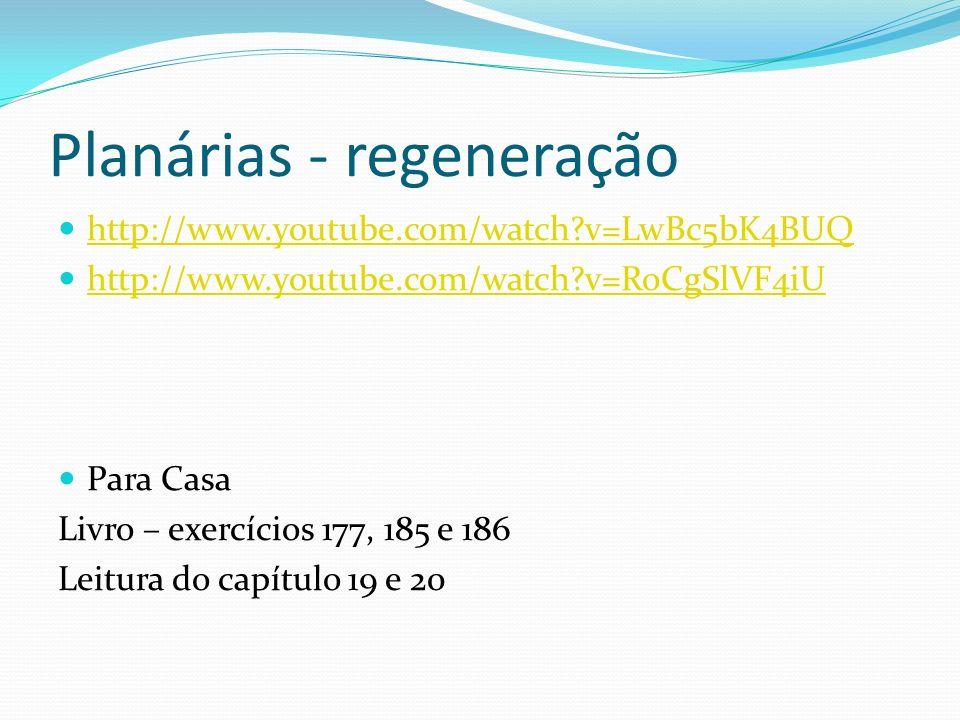 Planárias - regeneração http://www.youtube.com/watch?v=LwBc5bK4BUQ http://www.youtube.com/watch?v=RoCgSlVF4iU Para Casa Livro – exercícios 177, 185 e