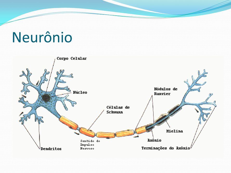 Neurônio