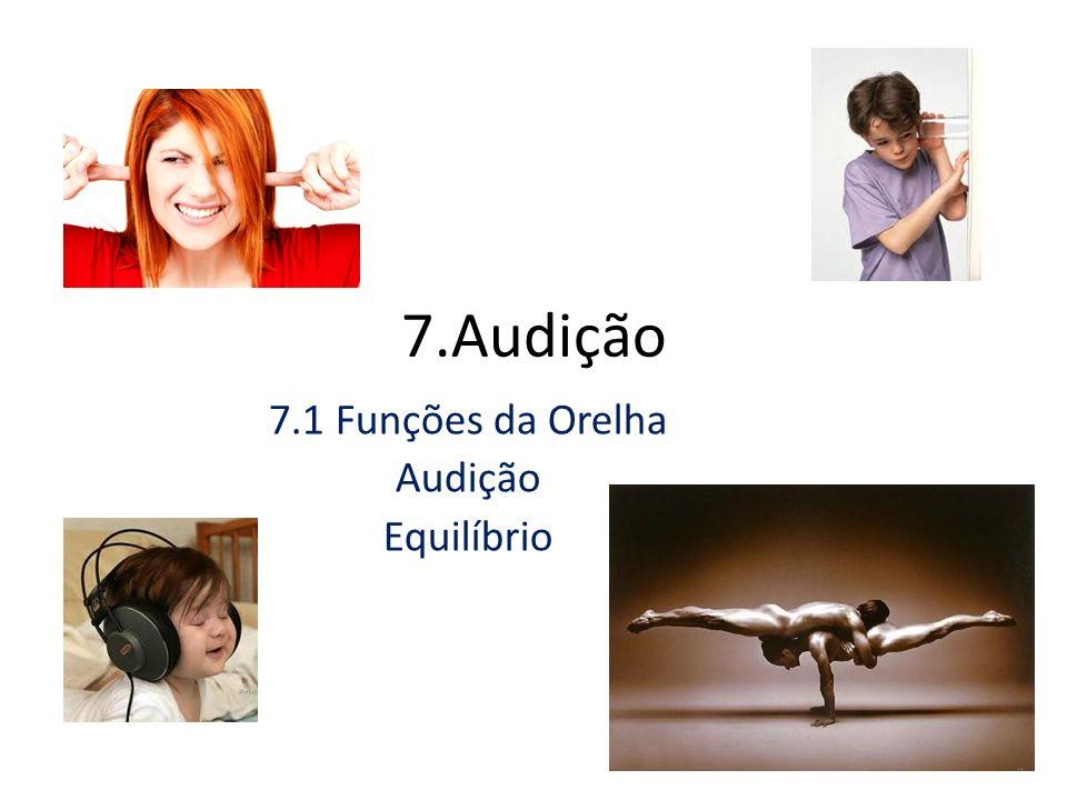 7.Audição 7.1 Funções da Orelha Audição Equilíbrio