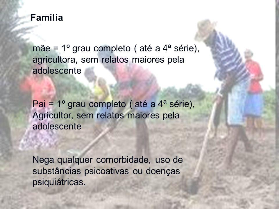 Família mãe = 1º grau completo ( até a 4ª série), agricultora, sem relatos maiores pela adolescente Pai = 1º grau completo ( até a 4ª série), Agricult