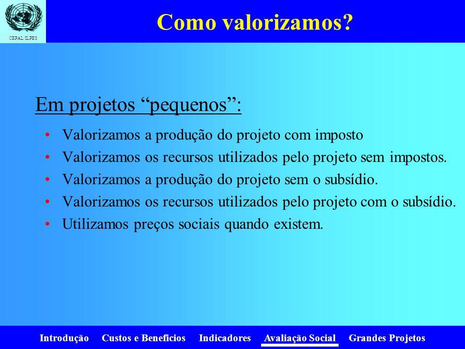 Introdução Custos e Beneficios Indicadores Avaliação Social Grandes Projetos CEPAL/ILPES Preços sociais Taxa de desconto social Valor social do trabal