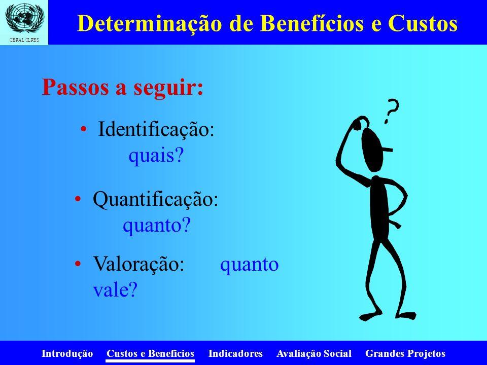 Introdução Custos e Beneficios Indicadores Avaliação Social Grandes Projetos CEPAL/ILPES Para quem avaliamos? Pessoa ou empresa: Avaliação privada Ava
