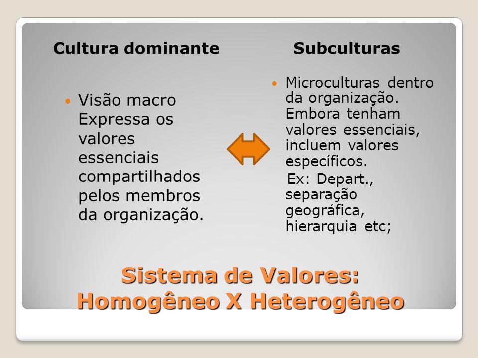 Sistema de Valores: Homogêneo X Heterogêneo Cultura dominanteSubculturas Visão macro Expressa os valores essenciais compartilhados pelos membros da or