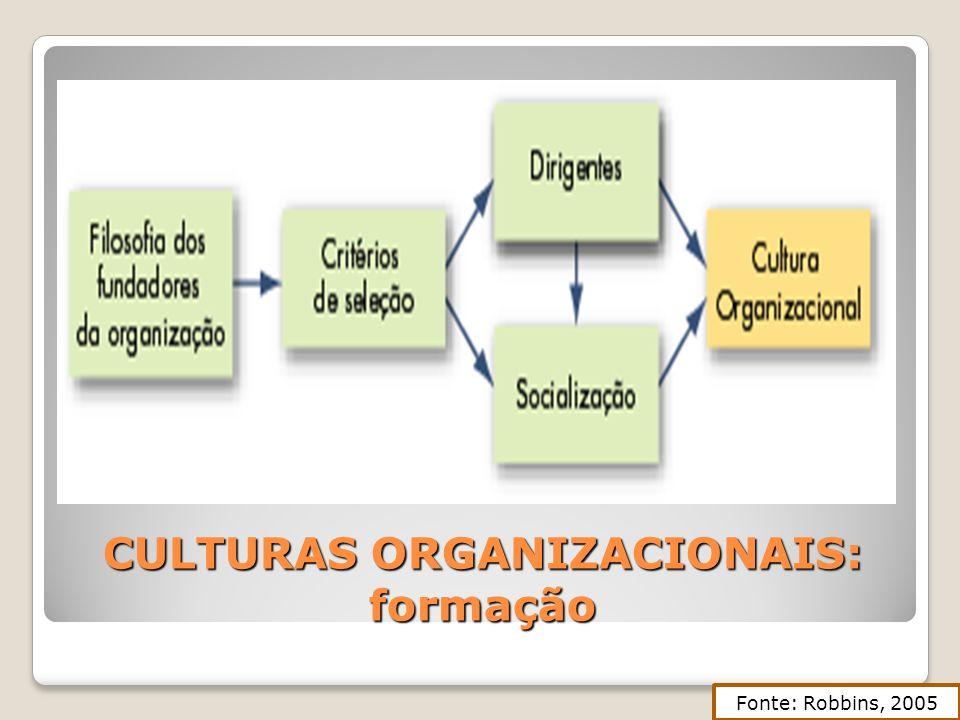 CULTURAS ORGANIZACIONAIS: formação Fonte: Robbins, 2005
