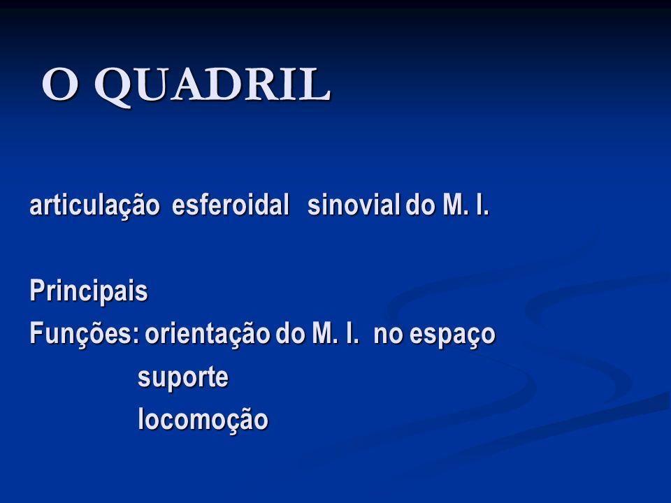 Roteiro de Atendimento Pré-operatório: Pré-operatório: Aval.