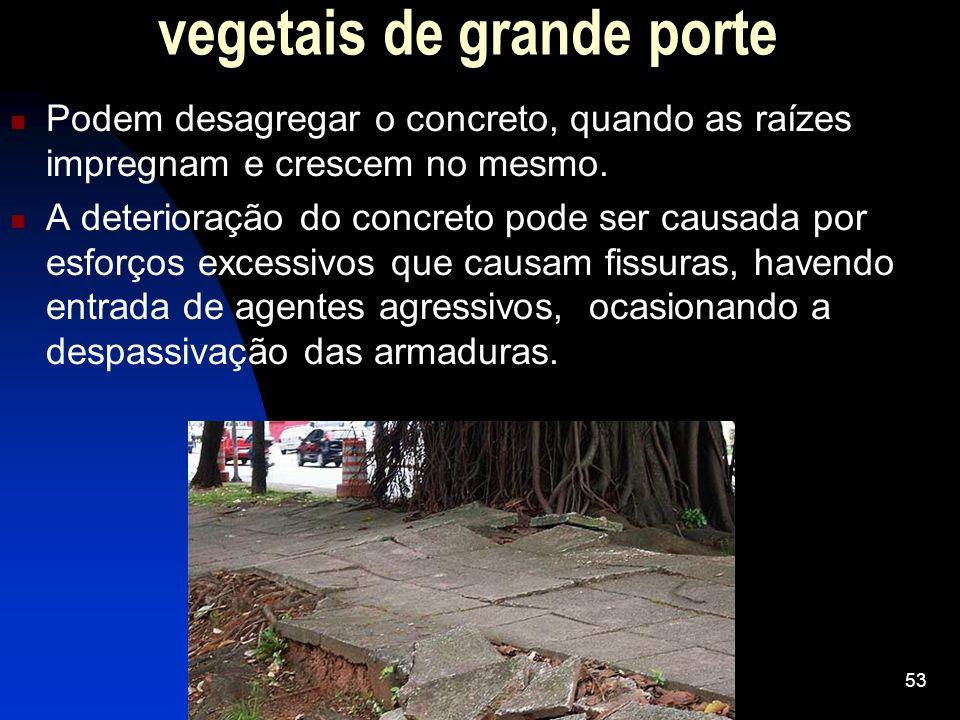vegetais de grande porte Podem desagregar o concreto, quando as raízes impregnam e crescem no mesmo. A deterioração do concreto pode ser causada por e