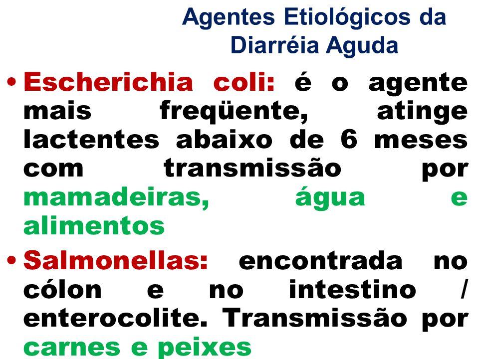 Agentes Etiológicos da Diarréia Aguda Escherichia coli: é o agente mais freqüente, atinge lactentes abaixo de 6 meses com transmissão por mamadeiras,
