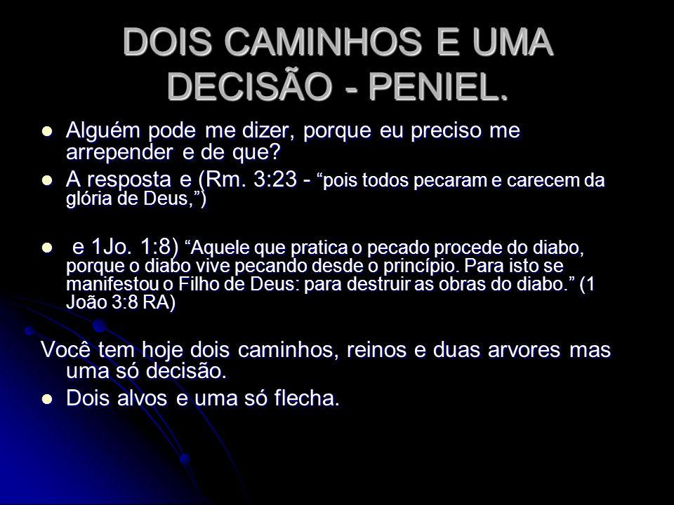 DOIS CAMINHOS E UMA DECISÃO - PENIEL.(Dt.